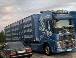VOLVO TOP FH13 540-EURO 6 -4 level Jumbo PLAVAC   veewagen vrachtwagen
